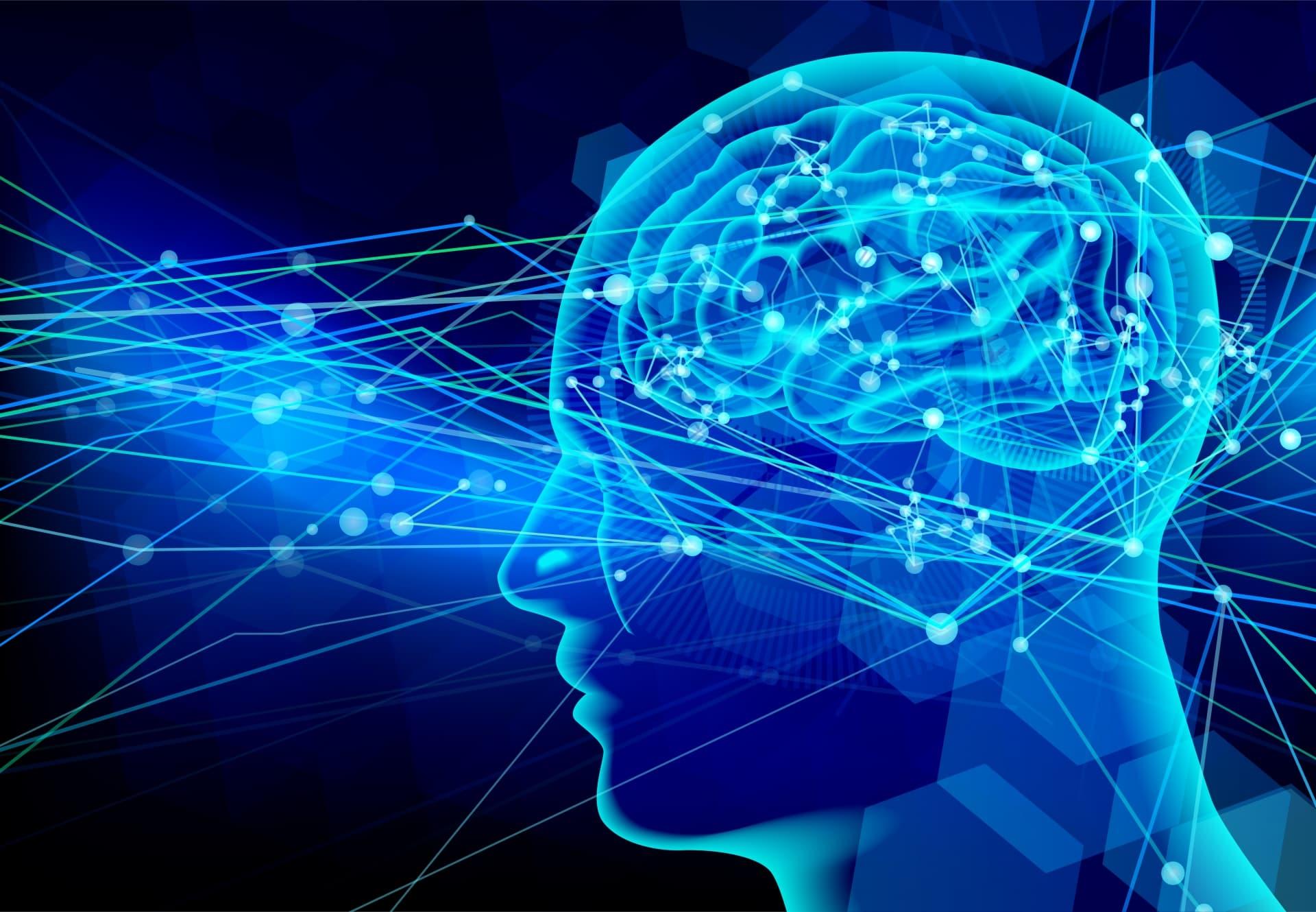脳報酬連鎖反応